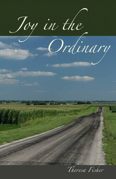 Joy in the Ordinary Cover blog
