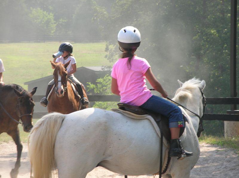 Katy-Horses-2012 020