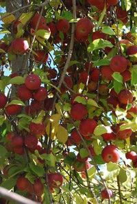 October_2007_024