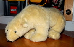 Polarbear0001