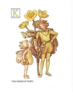Kingcup_fairy